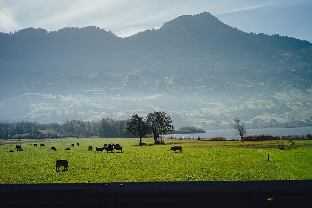 Alberto_Angelica_Switzerland_Day_Two-12