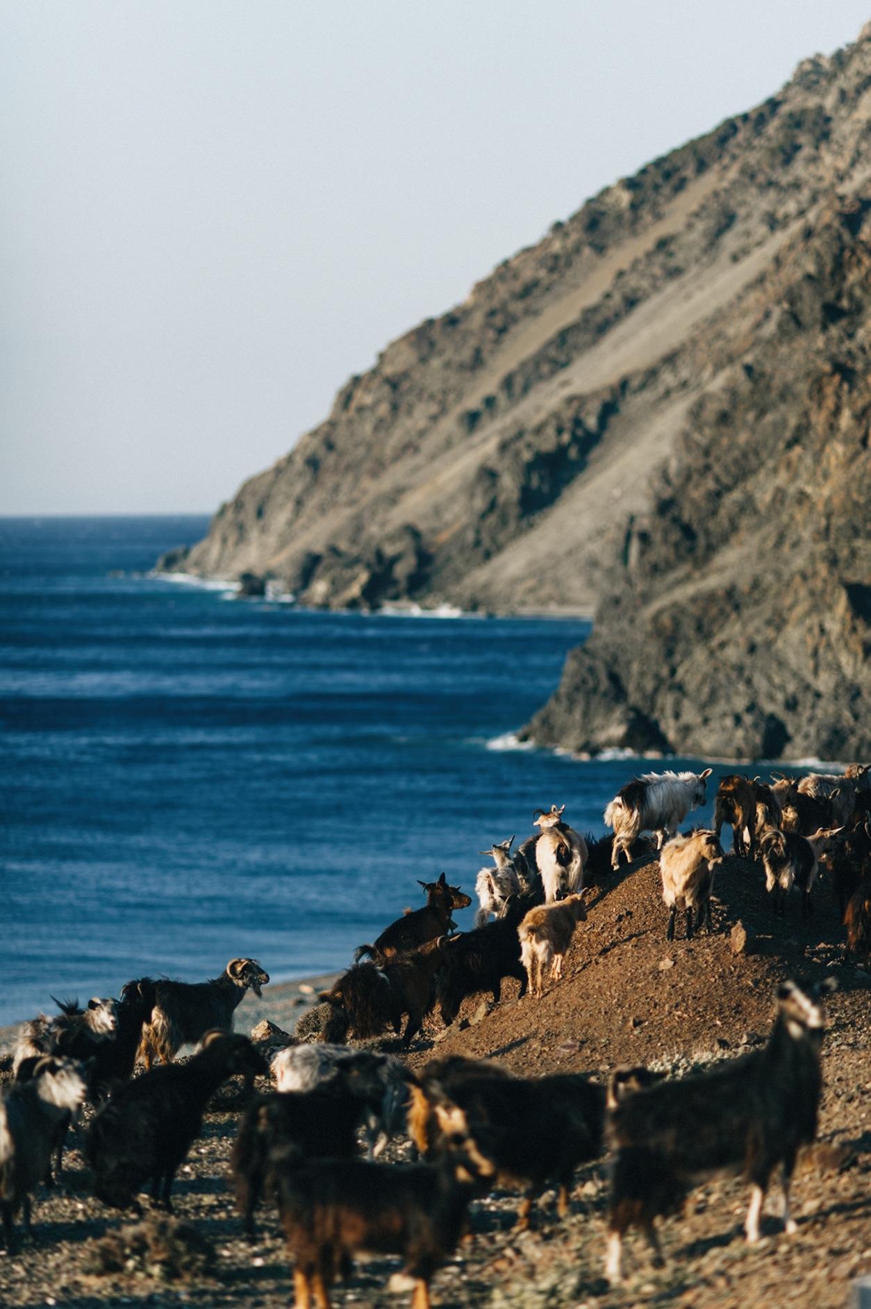 Greek-Island-Wedding-50